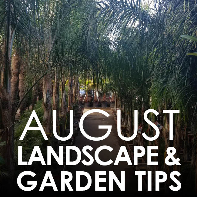Landscape and Garden Tips